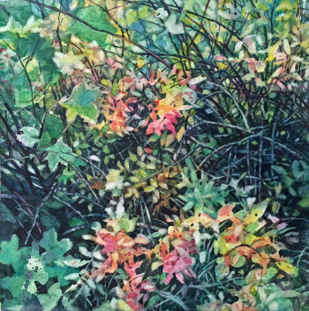 Fall Thicket - Nicoletta Baumeister