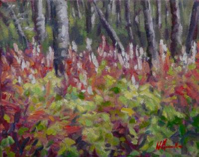Fireweed Audrey Pfannmuller