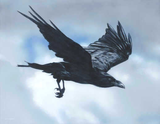Flight Of The Raven Terry Isaac