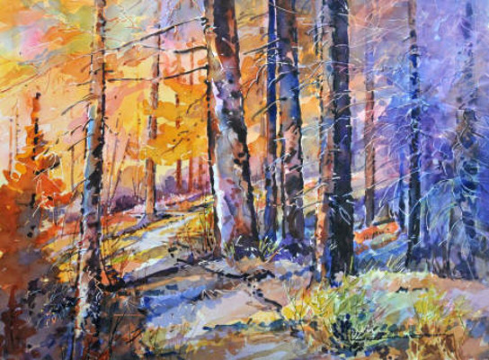 Forest Path Late Afternoon Gregg Johnson