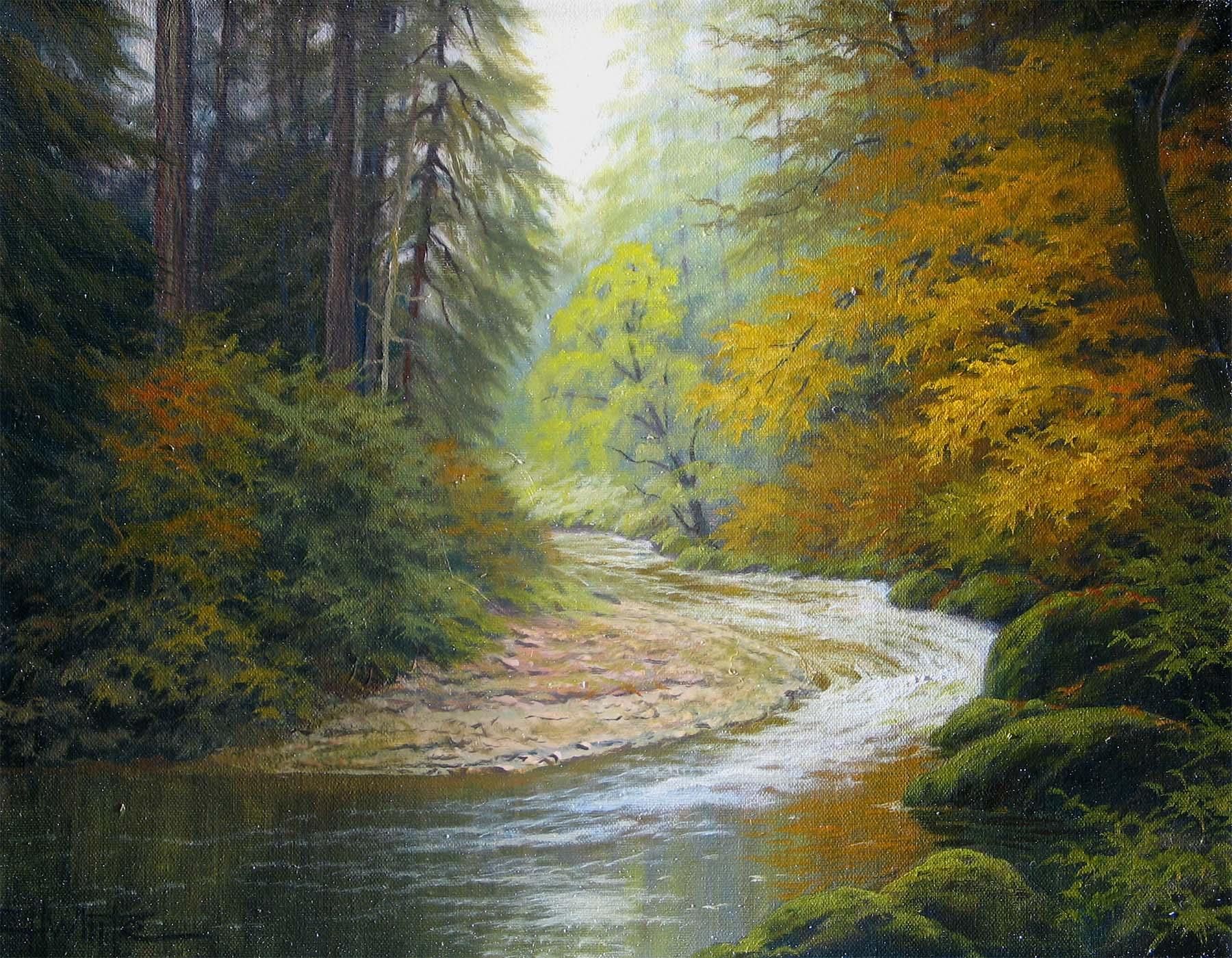 Forest Stream - Charles White