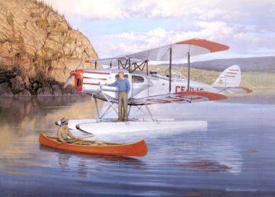 Fox Moth at Red Rock - Robert Bradford