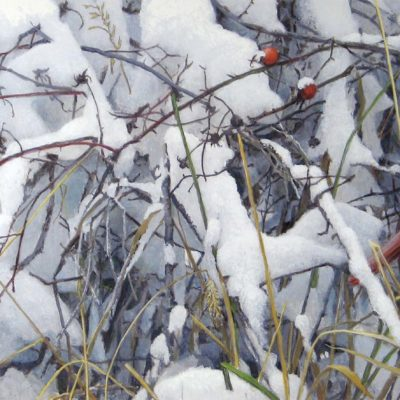 Fresh Snow - Cardinal - Robert Bateman