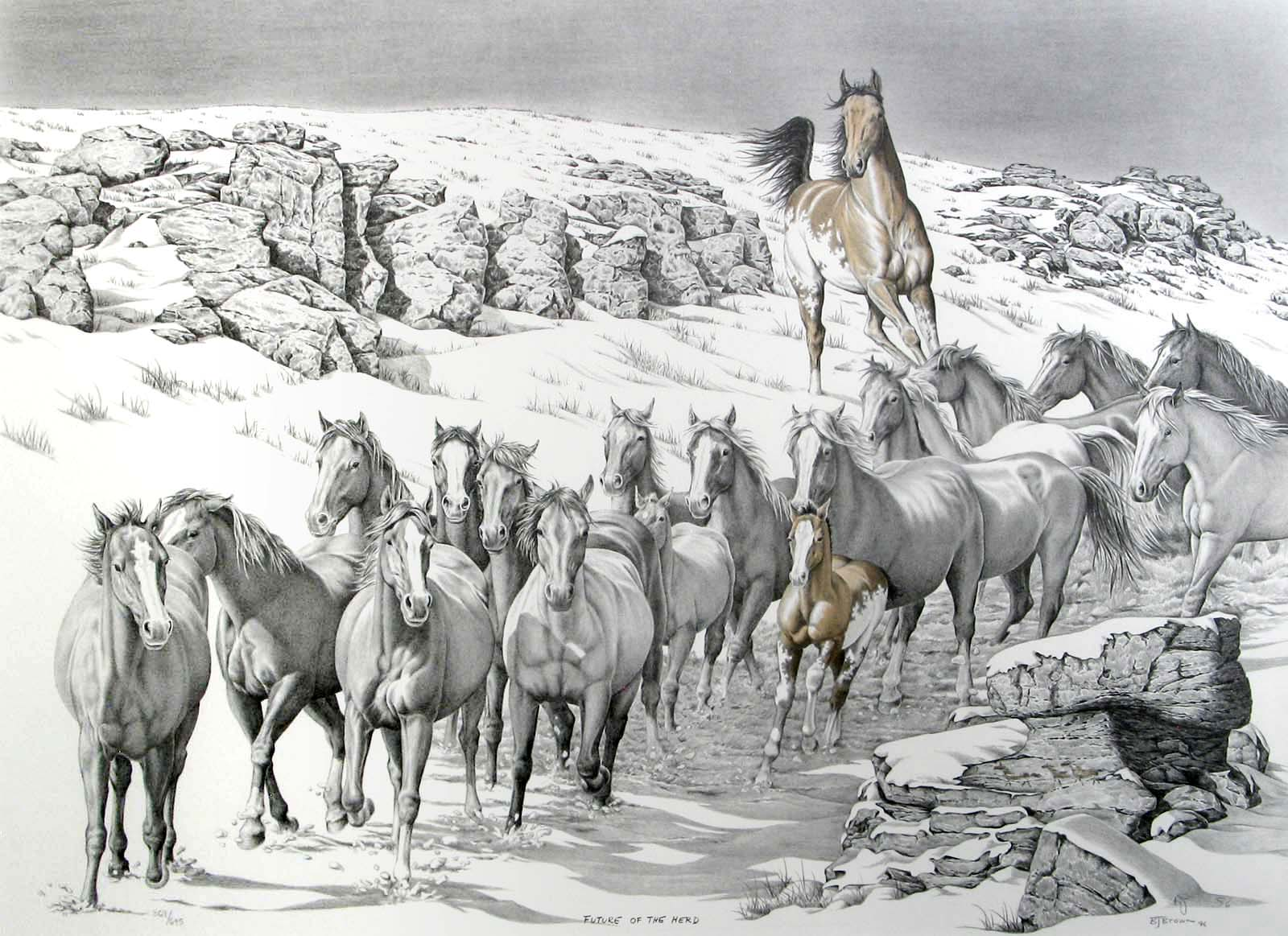 Future of the Herd - Bernie Brown