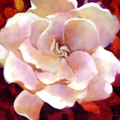 Gardenia Simon Bull