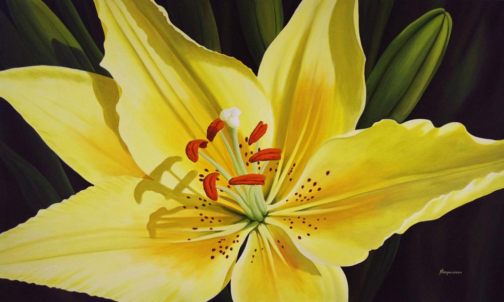 Starburst Hibiscus - Art by Artist Dennis Magnusson