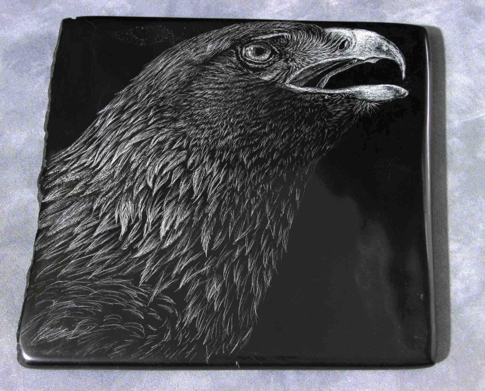 Golden Eagle #2 Tim Frampton