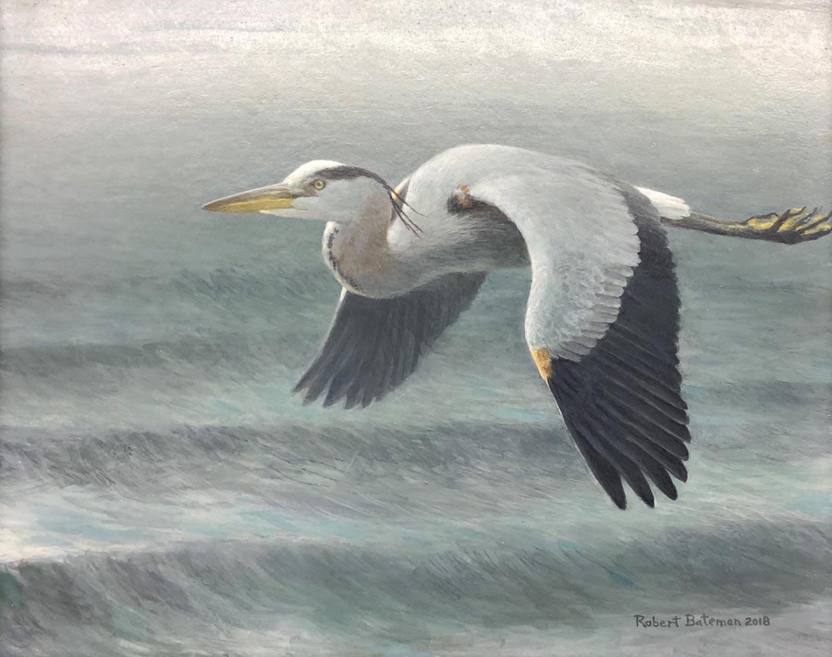 Great Blue Heron Over Waves - Robert Bateman