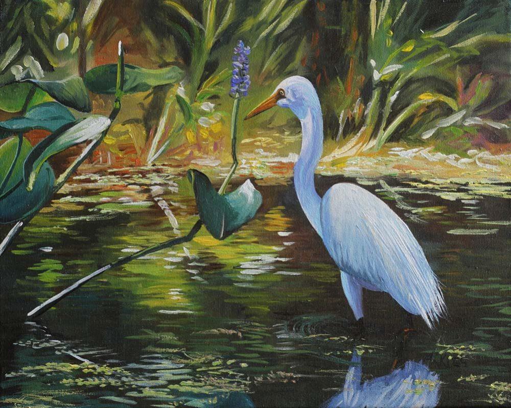 Great White Egret - Andrew Kiss
