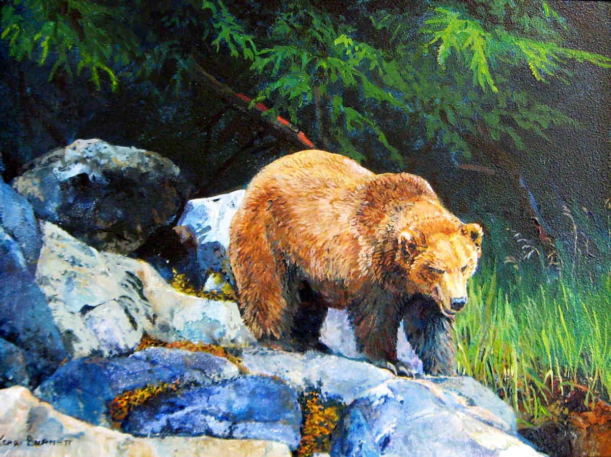 Grizzly On Shore Kerri Burnett