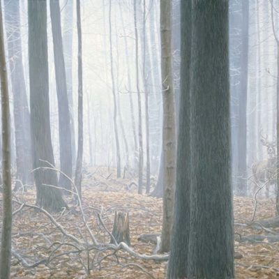 Hardwood Forest - White-Tailed Deer - Robert Bateman