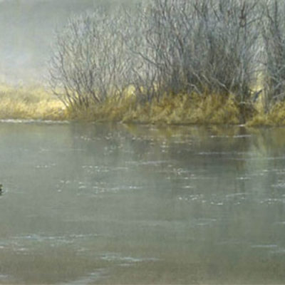 High Water - Mallard Pair - Robert Bateman