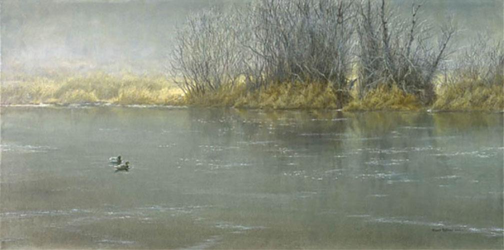 High Water - Mallard Pair - Robert Bateman