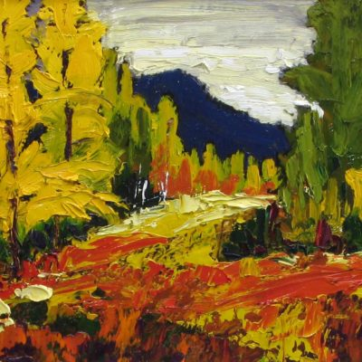 Highwood Pass Larches - Lois Bauman