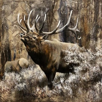 His Majesty - Imperial Elk - Maurade Baynton