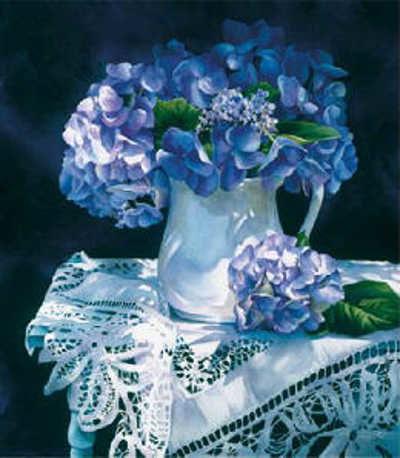 Hydrangea Melody Arleta Pech