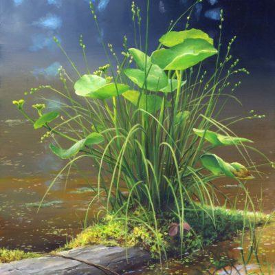 Joy Spring - Emergence - Charity Dakin