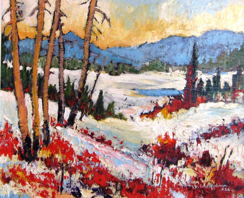 Kananaskis Winter Lois Bauman