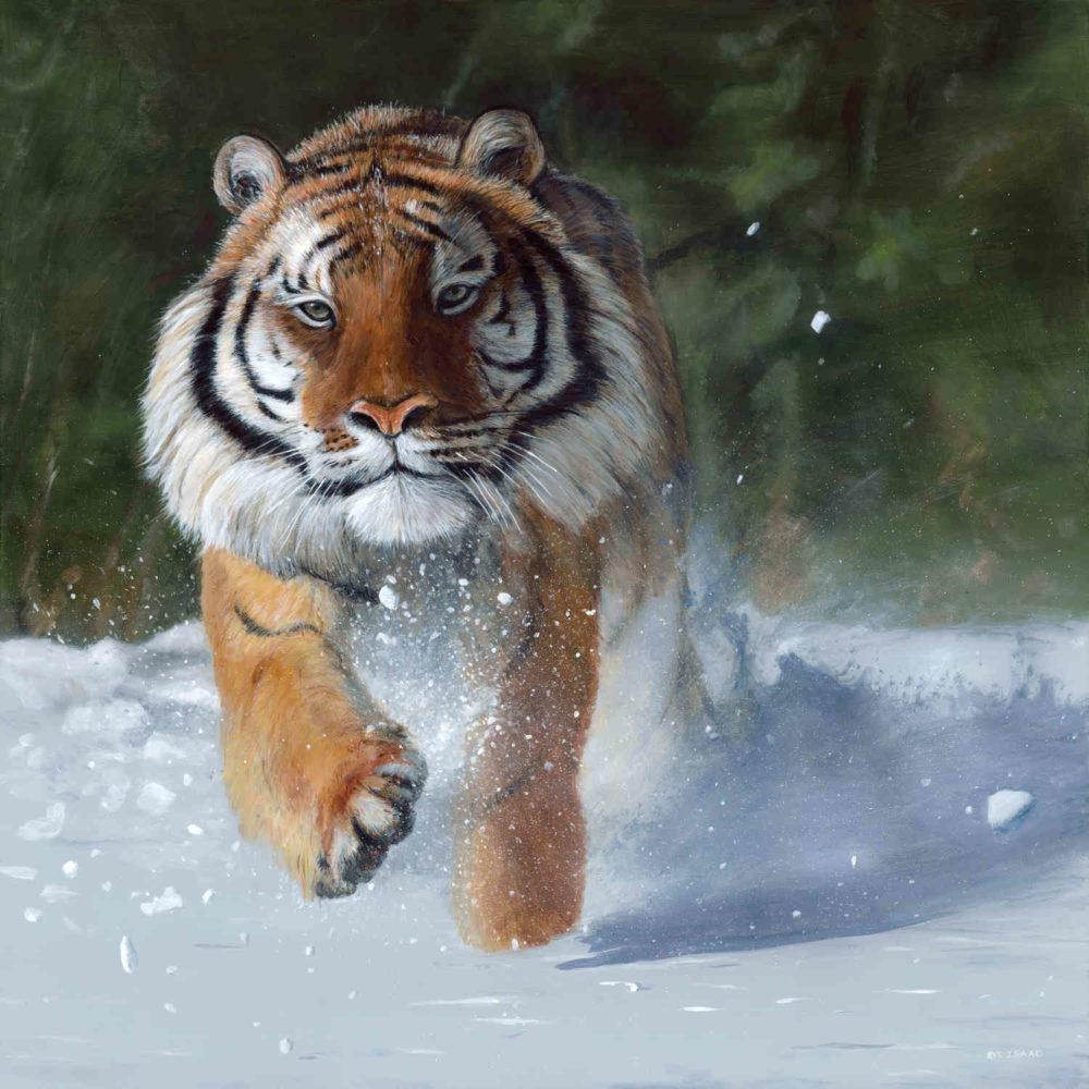 Kicking Snow Terry Isaac