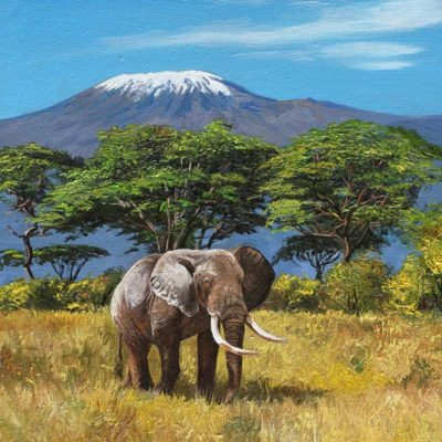 Kilimanjaro - Andrew Kiss