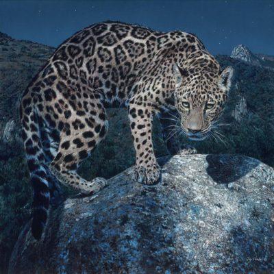 La Cazadora Nocturna - Guy Combes