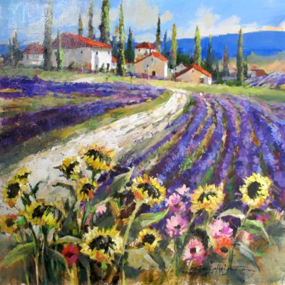 Lavender Fields of Provence - Brent Heighton