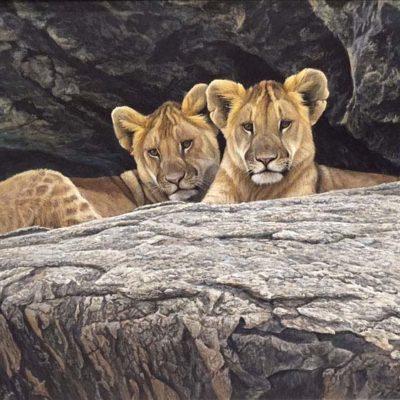 Lion Cubs - Robert Bateman