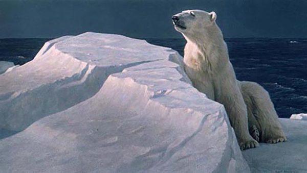 Long Light - Polar Bear - Robert Bateman