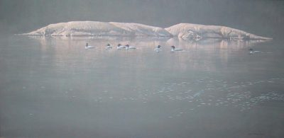 Loon Gathering at Big East - Robert Bateman