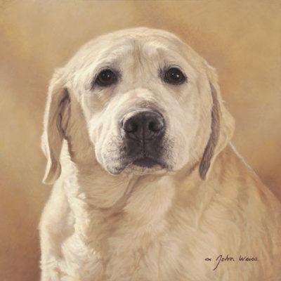 Maggie Portrait Of A Friend John Weiss