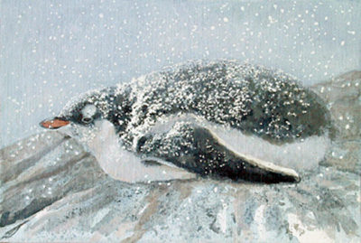 March Of The Penguins Robert Bateman