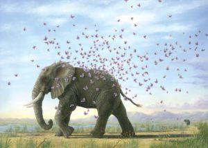 Metamorphosis - Robert Bissell
