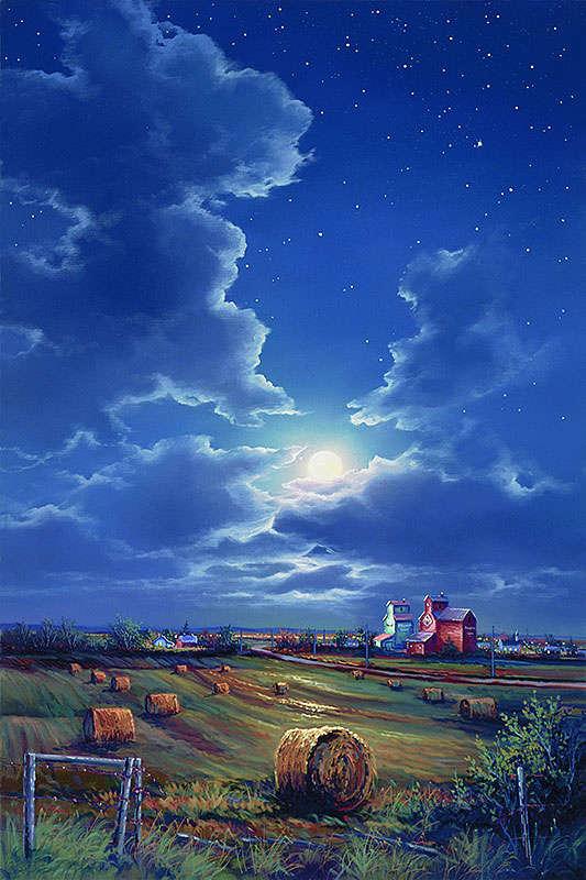 Midnight In A Prairie Garden Jonn Einerssen