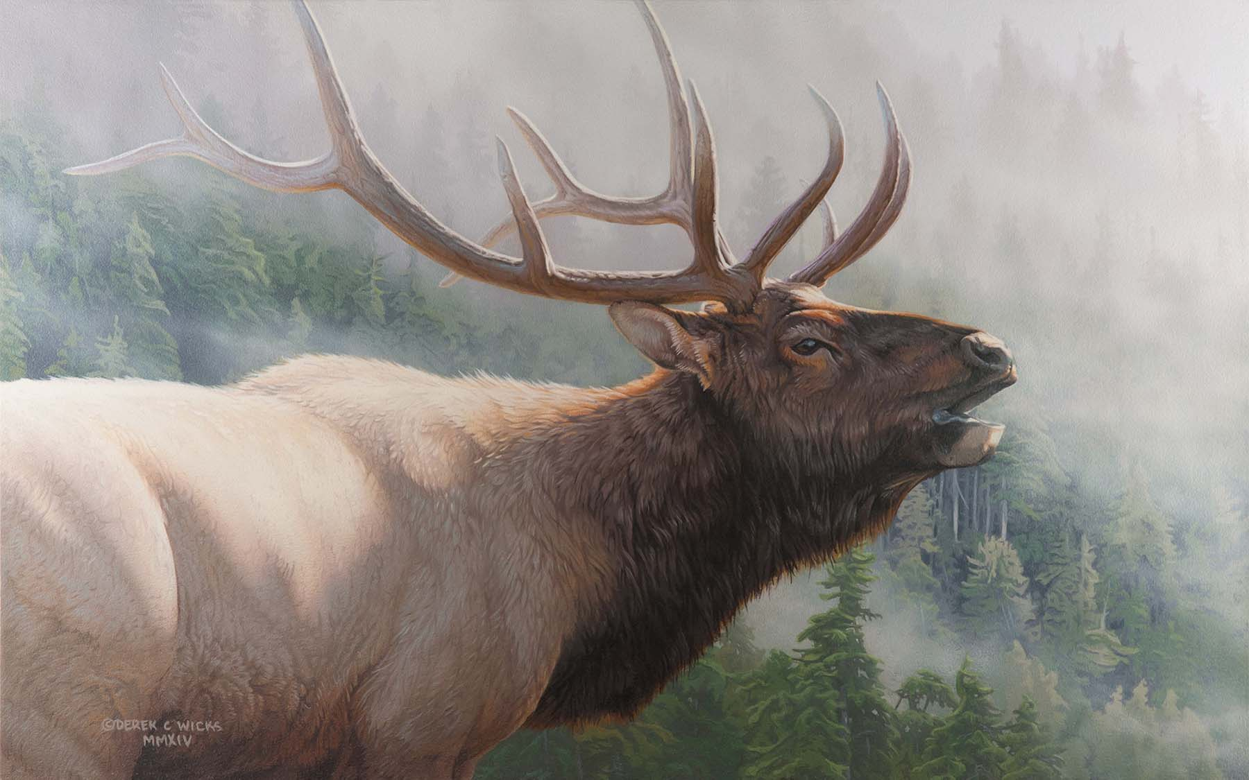 Misty Mountain Challenge - Derek Wicks