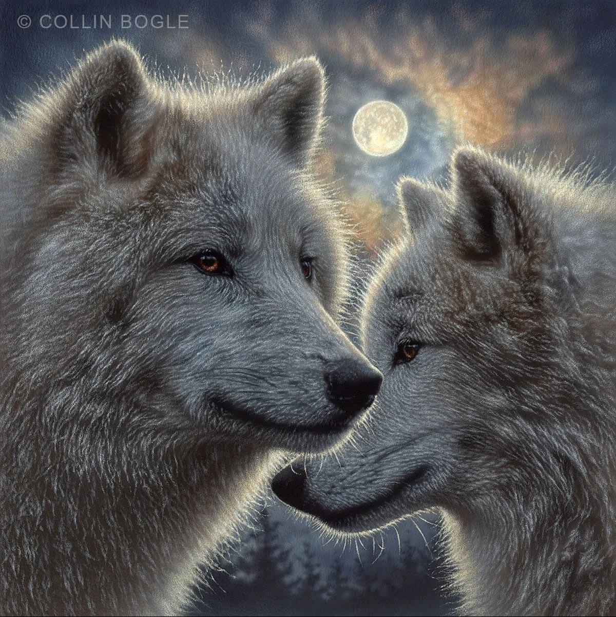 Moonlight Mates - Collin Bogle