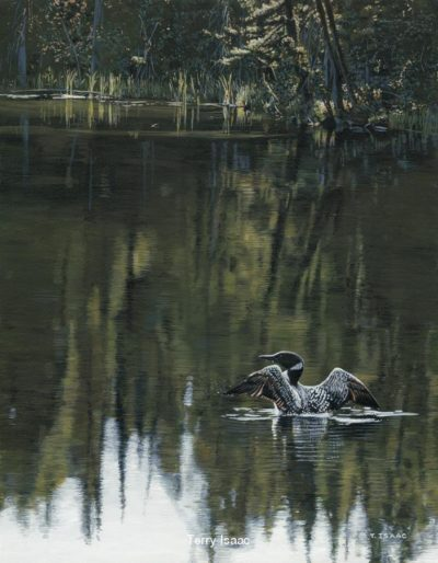 Morning Reflections Terry Isaac