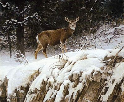 Mule Deer in Snow - Robert Bateman