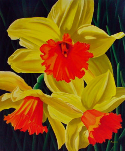 Narcissus Dennis Magnusson