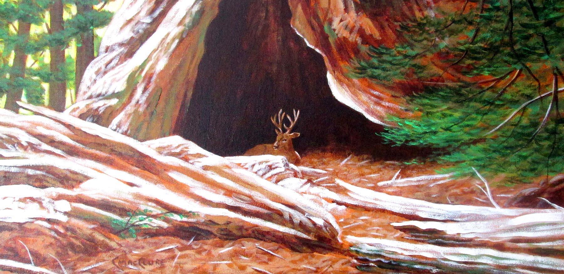 Nature's Hobbit - Chris MacClure