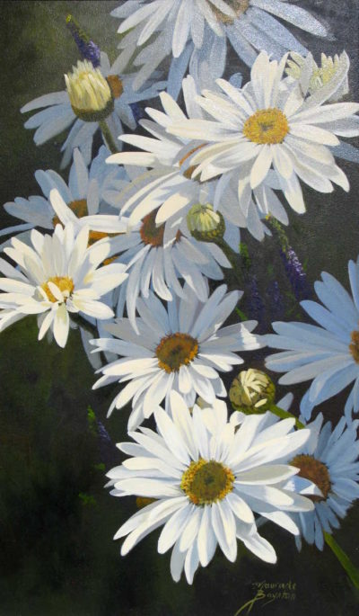 Natures Jewels Daisies Maurade Baynton 1