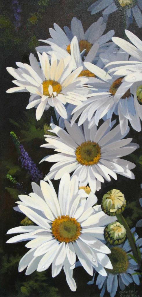 Natures Jewels Daisies Maurade Baynton 2