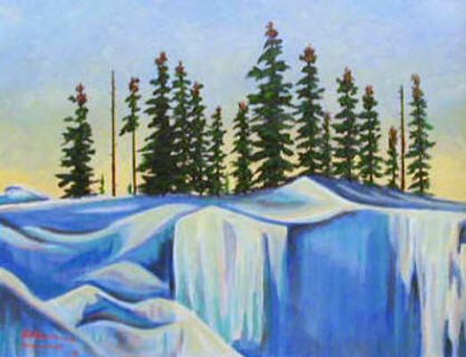 Northern Spruce Bern Will Brown