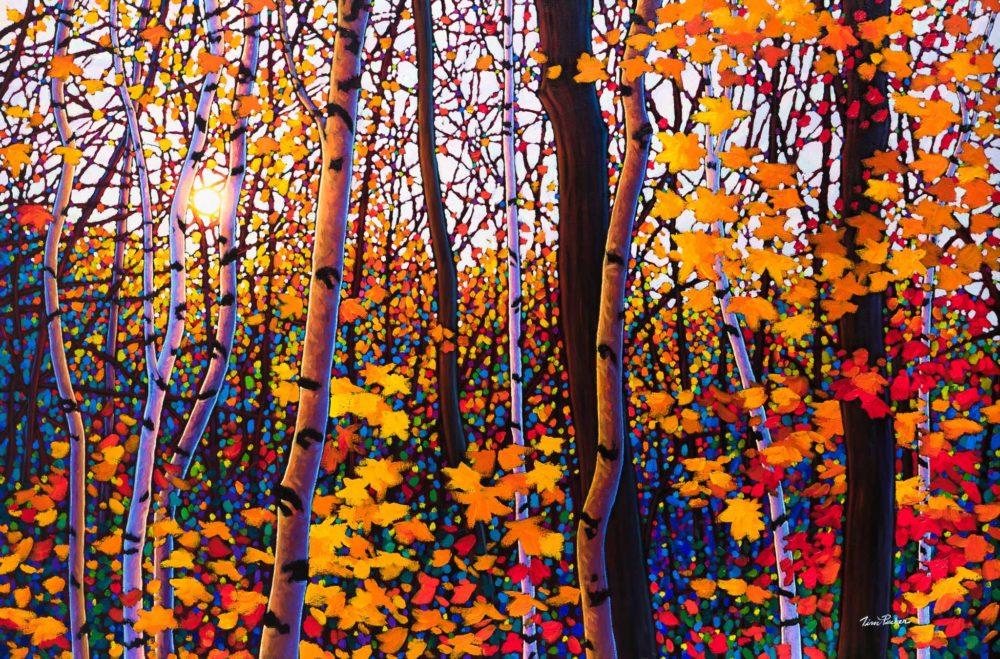 October Symphony, Algoma - Tim Packer