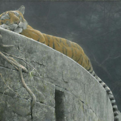 Old Fort Tiger Robert Bateman 1