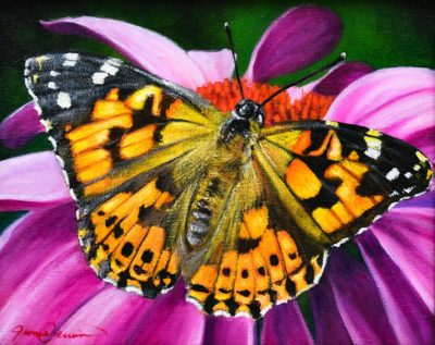 Painted Lady - James Corwin