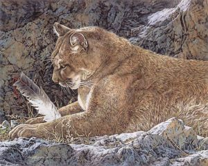 Paws And Reflect Judy Larson