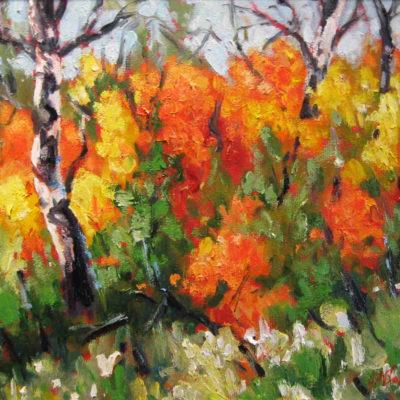 Pincherry Ridge Audrey Pfannmuller