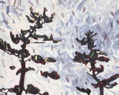 Pine Brothers - David Grieve