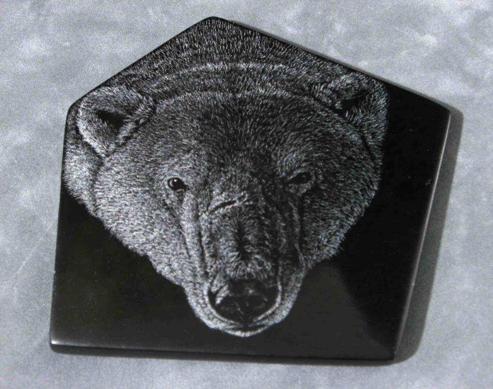 Polar Bear #1 Tim Frampton