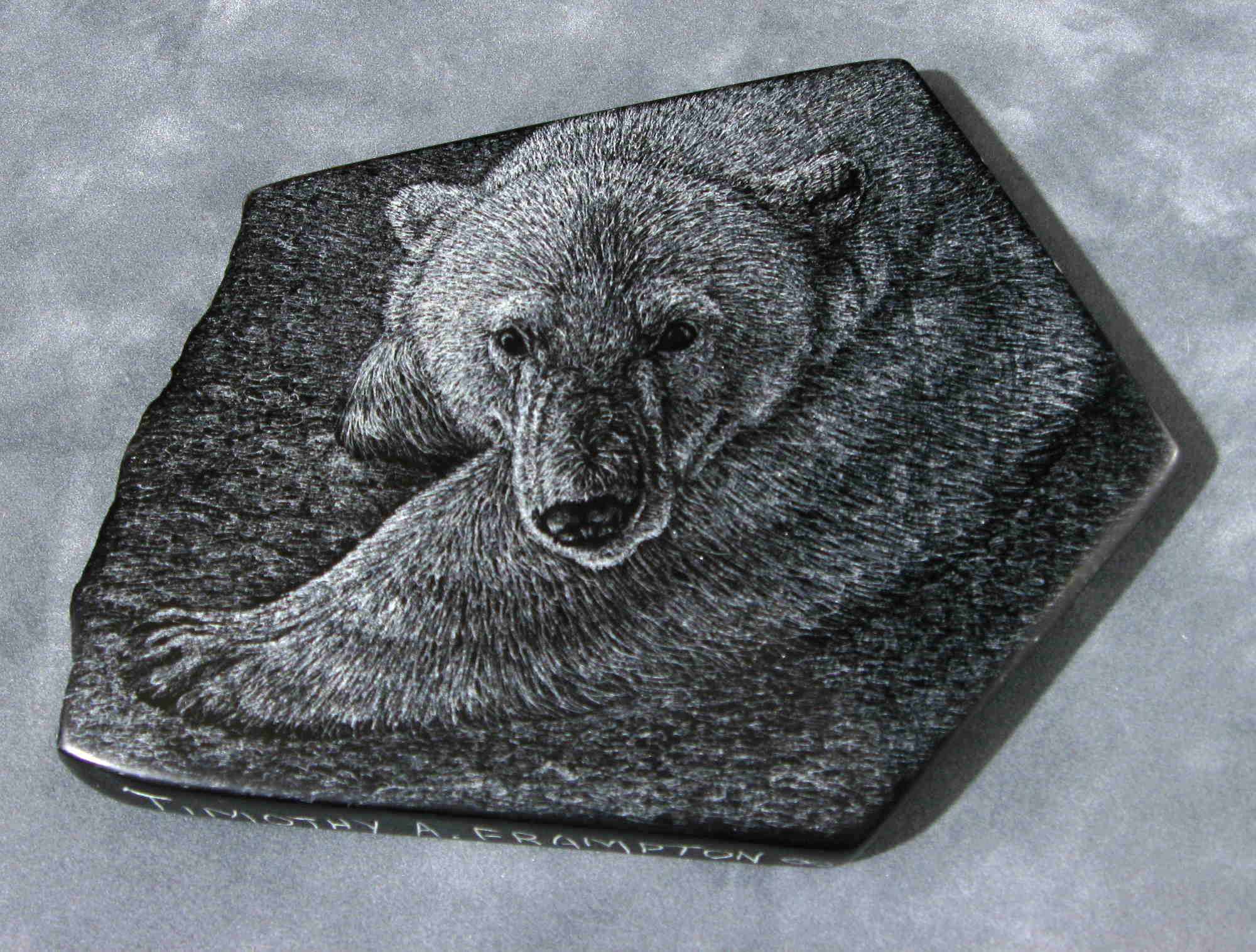 Polar Bear #2 Tim Frampton